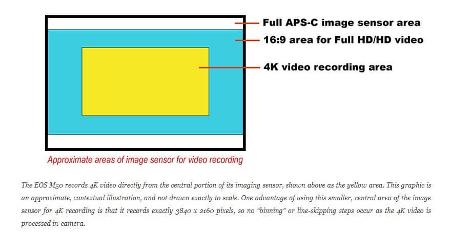 Canon M50 Mirrorless Bisa 4K Video Tapi Crop