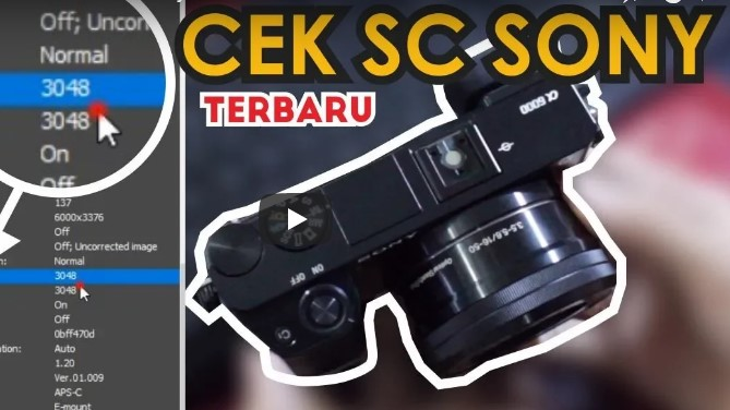 Cara Cek Shutter Count Sony Mirrorless